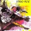 Cover of the album Birdking