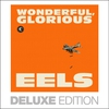 Cover of the album Wonderful, Glorious (Deluxe Edition)