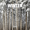 Couverture de l'album Winter
