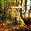 Cover of the album Matkalla