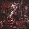 Cover of the album Dissect, Molest, Ingest