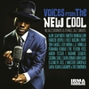 Couverture de l'album Voices from the New Cool (Nu Jazz Crooners and Female Jazz Singers)