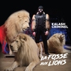 Cover of the album La fosse aux lions