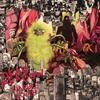 Couverture de l'album Warble Womb