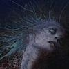 Couverture de l'album A Fragile Hope