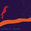 Couverture de l'album nightbird