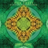 Cover of the album Celtic Vedic