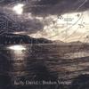 Couverture de l'album Broken Voyage
