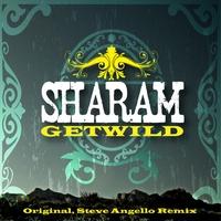 Couverture du titre Get Wild (feat. Mario Vazquez)
