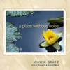Couverture de l'album A Place Without Noise