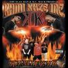 Couverture de l'album Kami Kaze