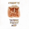 Couverture de l'album Thunder Perfect Mind