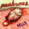 Couverture de l'album Pelle
