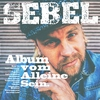 Couverture de l'album Album vom Alleine Sein