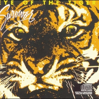 Cover of the track Eye of the Tiger