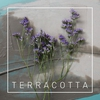 Cover of the track Terracotta