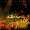 Couverture de l'album The Rainwater LP