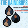 Cover of the album The Raindrops