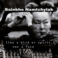 Cover of the track Like a Bird or Spirit, Not a Face