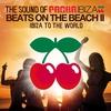 Couverture de l'album Beats On the Beach II (Ibiza To the World)