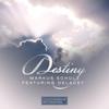 Couverture du titre Destiny (feat. DeLacey)