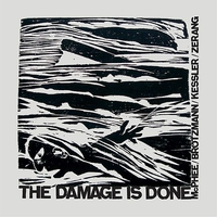 Cover of the track The Damage Is Done