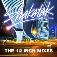Couverture du titre The 12 Inch Mixes