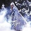 Couverture de l'album My Winter Storm