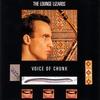 Couverture de l'album Voice of Chunk