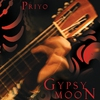 Couverture de l'album Gypsy Moon