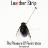 Cover of the album The Pleasure of Penetration (Remastered)