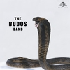 Couverture de l'album The Budos Band III