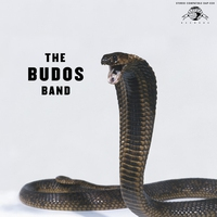 Cover of the track The Budos Band III