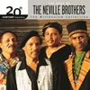 Couverture de l'album Uptown Rulin' the Best of the Neville Brothers