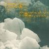 Couverture de l'album White Mountain