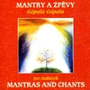 Couverture de l'album Mantras & Chants: Gopala Gopala