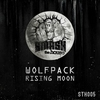 Cover of the album Rising Moon - Single