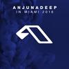 Cover of the album Anjunadeep in Miami 2016