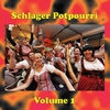 Cover of the track Schon wieder mal