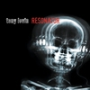 Cover of the album Resonator