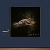 Couverture de l'album Mapping the Rendezvous (Deluxe Edition)