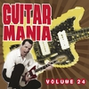 Couverture de l'album Guitar Mania, Vol. 24