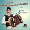Cover of the album Flotte Harmonikaklänge