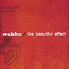 Couverture de l'album the beautiful effect