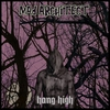 Cover of the album Hang High