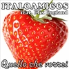 Cover of the album Quello che vorrei (feat. Elix England)