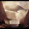 Couverture du titre Comets