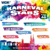 Cover of the album Karneval der Stars, Folge 46