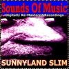 Cover of the album Sounds Of Music pres. Sunnyland Slim (Digitally Re-Mastered Recordings)
