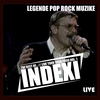 Couverture de l'album Indexi Live Tour